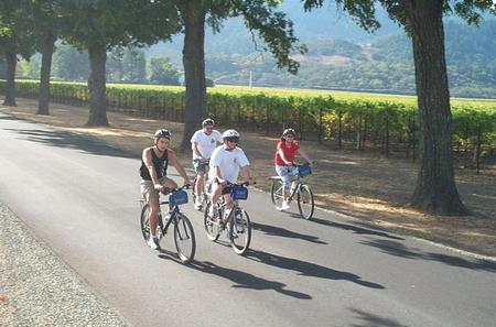 Healdsburg Wine Country Sip 'n' Cycle Bike Tour