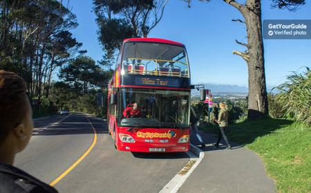 Cape Town Hop-On Hop-Off Tour: 1 or 2 Day Ticket