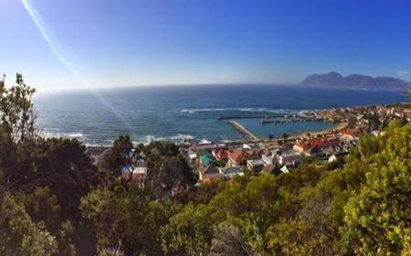 Cape Town: Spes Bona Valley Hike