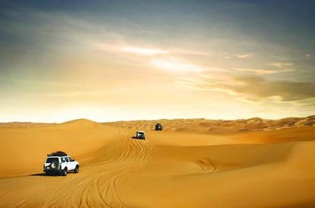 Wüstensafari mit Barbecue-Abendessen von Dubai aus: Dünenfahrt, Kamelritt, Live-Unterhaltung