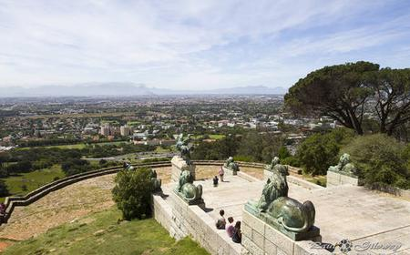 Cape Town: Half Day Table Mountain Bike Tour