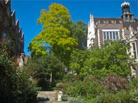 Secret Gardens of London Small Group Tour