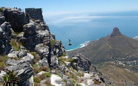 Cape Town: Table Mountain National Park Guided Hike
