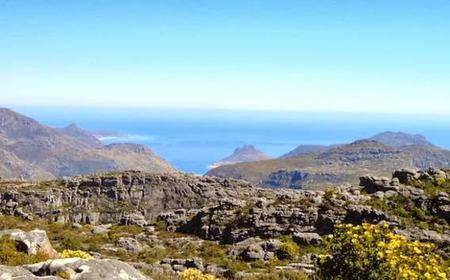 Full-Day | Table Mountain Hike - Cape Town