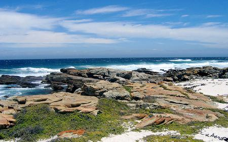 Full Day | Fairest Cape Peninsula Tour