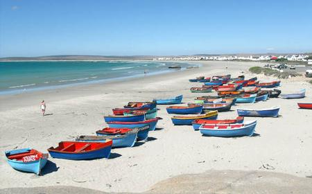 From Cape Town: 2-Day West Coast Highlights Tour