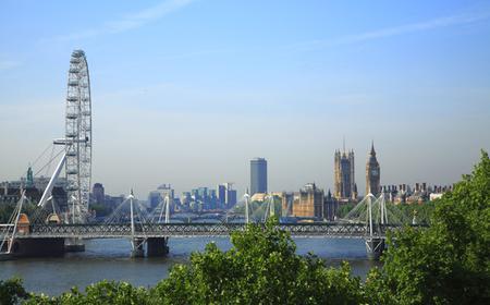 London: 3.5-Hour Panorama Tour