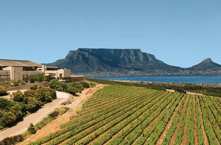 Private Tour: Durbanville Wine Valley Tasting Tour from Cape Town