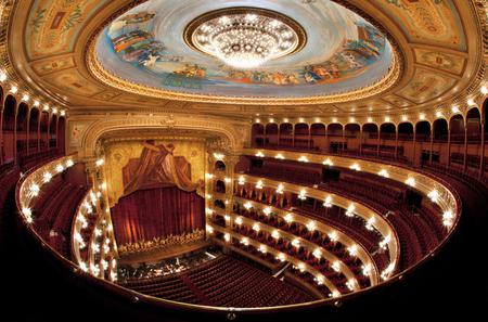 Buenos Aires Walking Tour Including Colon Theater and MALBA