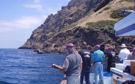 From Newport Beach: Full-Day Catalina Island Fishing Trip