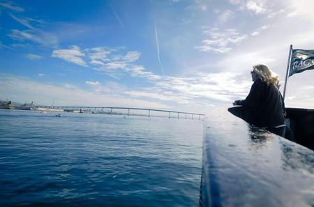 Ferry Ride and Small-Group Tour of Coronado from San Diego