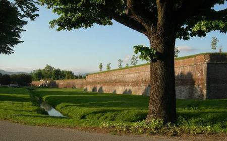 Lucca Semi-Private 3-Hour Tour