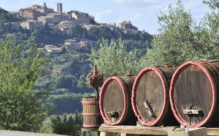 Food & Wine Experience in the Countryside from Lucca
