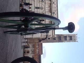 Lucca Bike Tour and Wine-Tasting