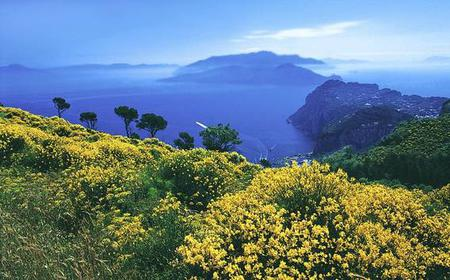 Full-Day Walking Tour of Capri with a Private Guide