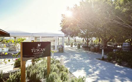 Winery Tour & Tasting followed by Tuscan Terrace Lunch