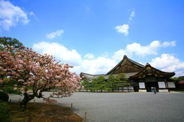Kyoto City Tour: Golden Pavilion, Nijo Castle, Kyoto Imperial Palace and Handicraft Center