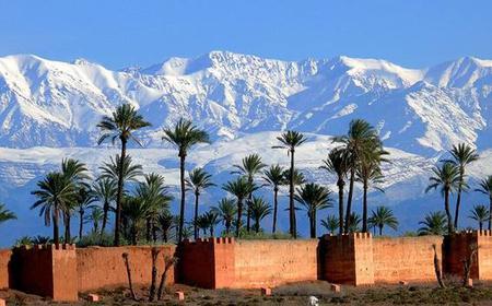 Marrakech Full-Day Tour from Casablanca