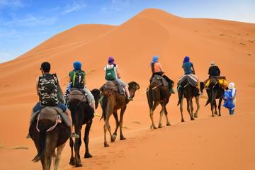 Private 4-Day Camel Trekking and Kasbah Trail from Marrakech