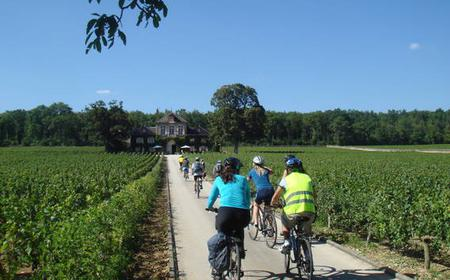 From Beaune: 1-Day Bicycle and Wine Tour in Burgundy