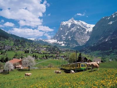 Grindelwald and Interlaken Mountain Resorts Tour from Lucerne