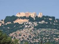 Jerash Ajloun Anjura and Umm Qais Day Trip from Madaba