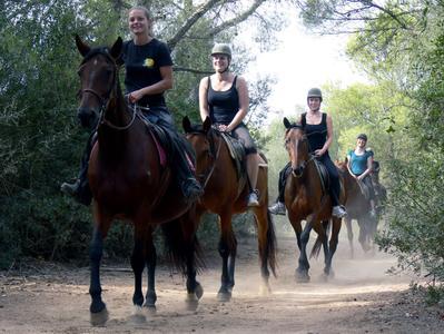Rancho Grande Day Trip from Mallorca