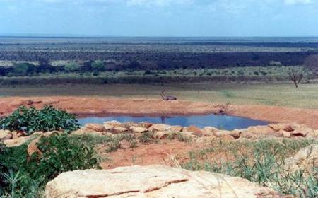 Tsavo National Parks 2-Day Safari from Mombasa