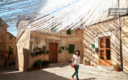 Valldemossa Half-Day Tour From South Mallorca