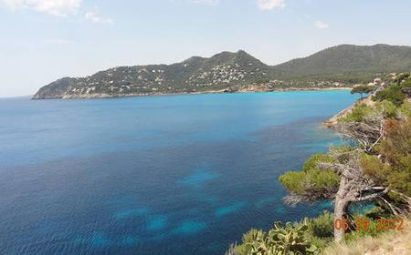 Palma de Mallorca: Private Half-Day/Full-Day Shore Excursion