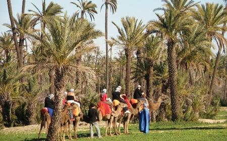 90-Minute Camel Trek in Marrakech