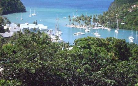 Saint Lucia: Private 7-Hour Shore Excursion