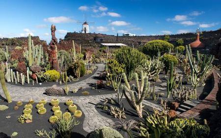 Lanzarote: 1-Day César Manrique Tour