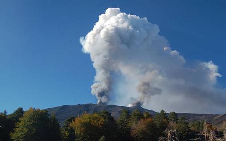Mount Etna Volcano Half Day Trekking & Food Tasting