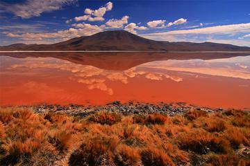 3-Day Salar de Uyuni and Laguna de Colores from Uyuni