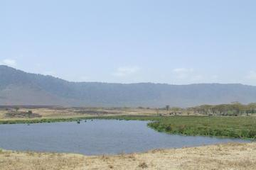 7-Day Private Tour: Lake Manyara, Serengeti, Ngorongoro and Tarangire from Arusha