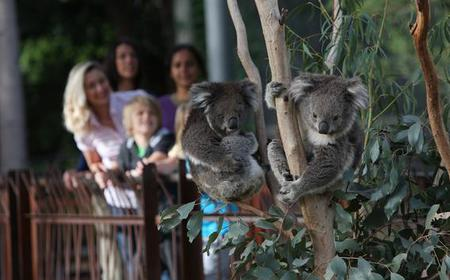 Melbourne Zoo 1-Day General Admission Ticket