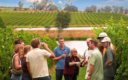 Full-Day Yarra Valley Wine Experience with Lunch