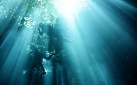 Mérida Full-Day Subterranean Snorkel Adventure