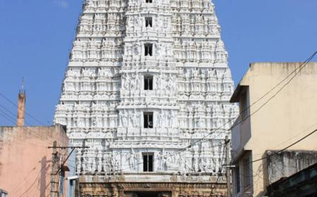 9 Day South India Temple Tour