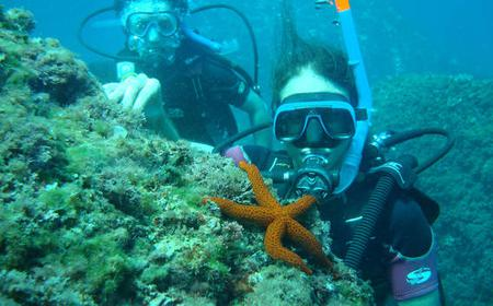 Alicante: 2-Hour Beginners Diving Experience