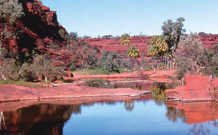 Palm Valley Full-Day 4WD Adventure from Alice Springs