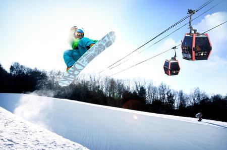 Daemyung Vivaldi Park Ski or Spa Day Trip from Seoul