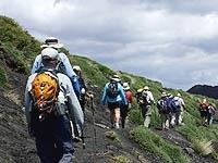 Private Etna Tour and Wine Tasting from Messina