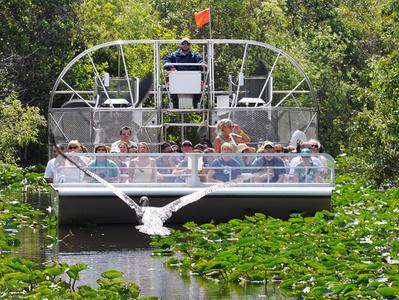 Everglades Afternoon Airboat Adventure