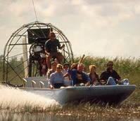Everglades National Park: 3.5-Hour Adventure Tour