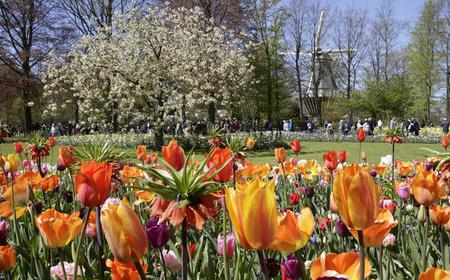 Keukenhof and Flower Fields Half-Day Small Group Tour