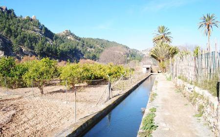 Cieza Private eBike Tour: Last Moorish Valley of Ricote