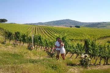 Brunello Vineyards Bus Tour