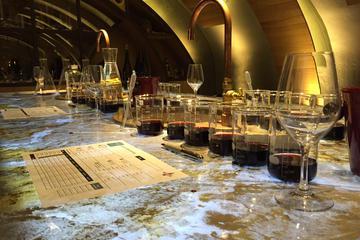 Winemaking Workshop in Paris